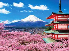 Vé máy bay khuyến mãi đi Nhật Bản trải nghiệm những điều thú vị (P.2)