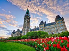 Vé máy bay đi Canada chỉ từ 411 USD/chiều – Book ngay!
